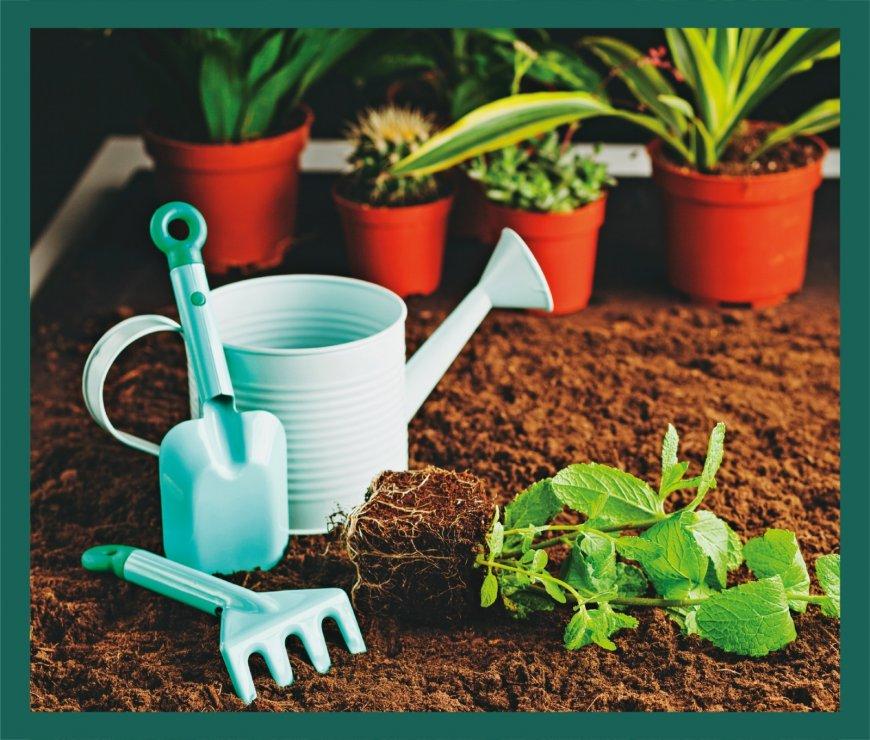 Bahçe ve Peyzaj Ürünleri
